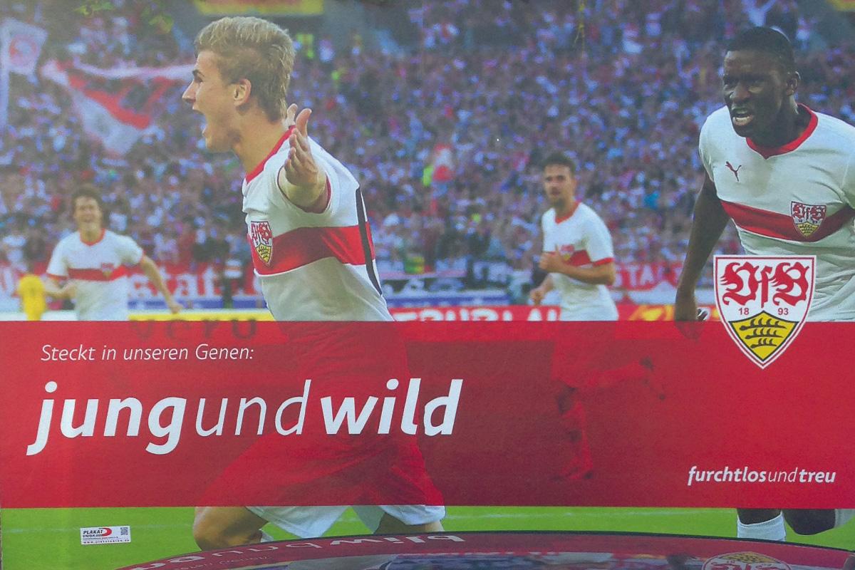 VfB Jung und wild